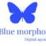 Blue Morpho Digital